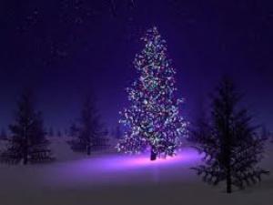 Infit vám přeje krásné Vánoce !